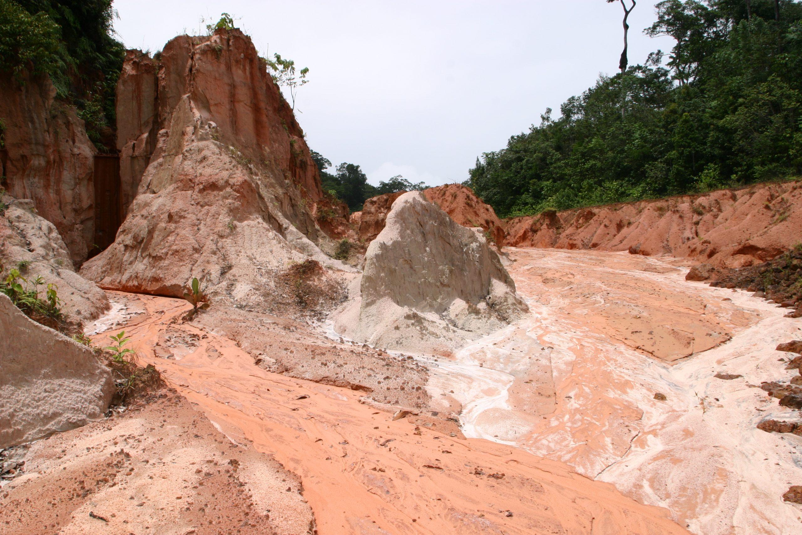 Bodenerosion im tropischen Regenwald