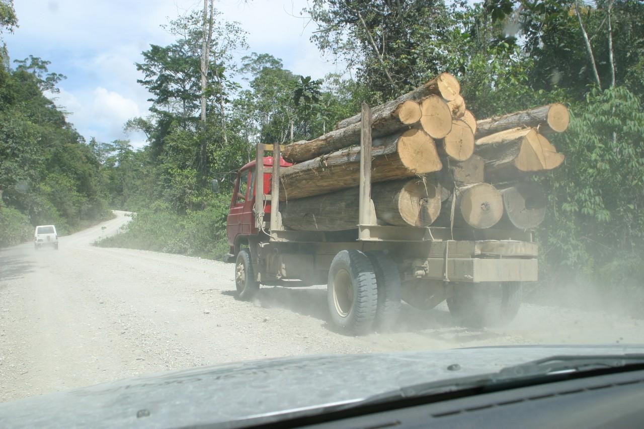 Holztransport in Indonesien