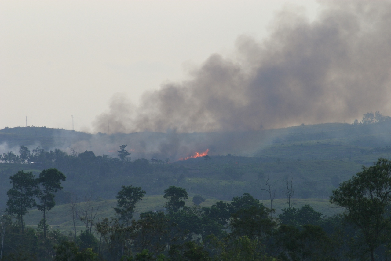 Waldbrand in Indonesien