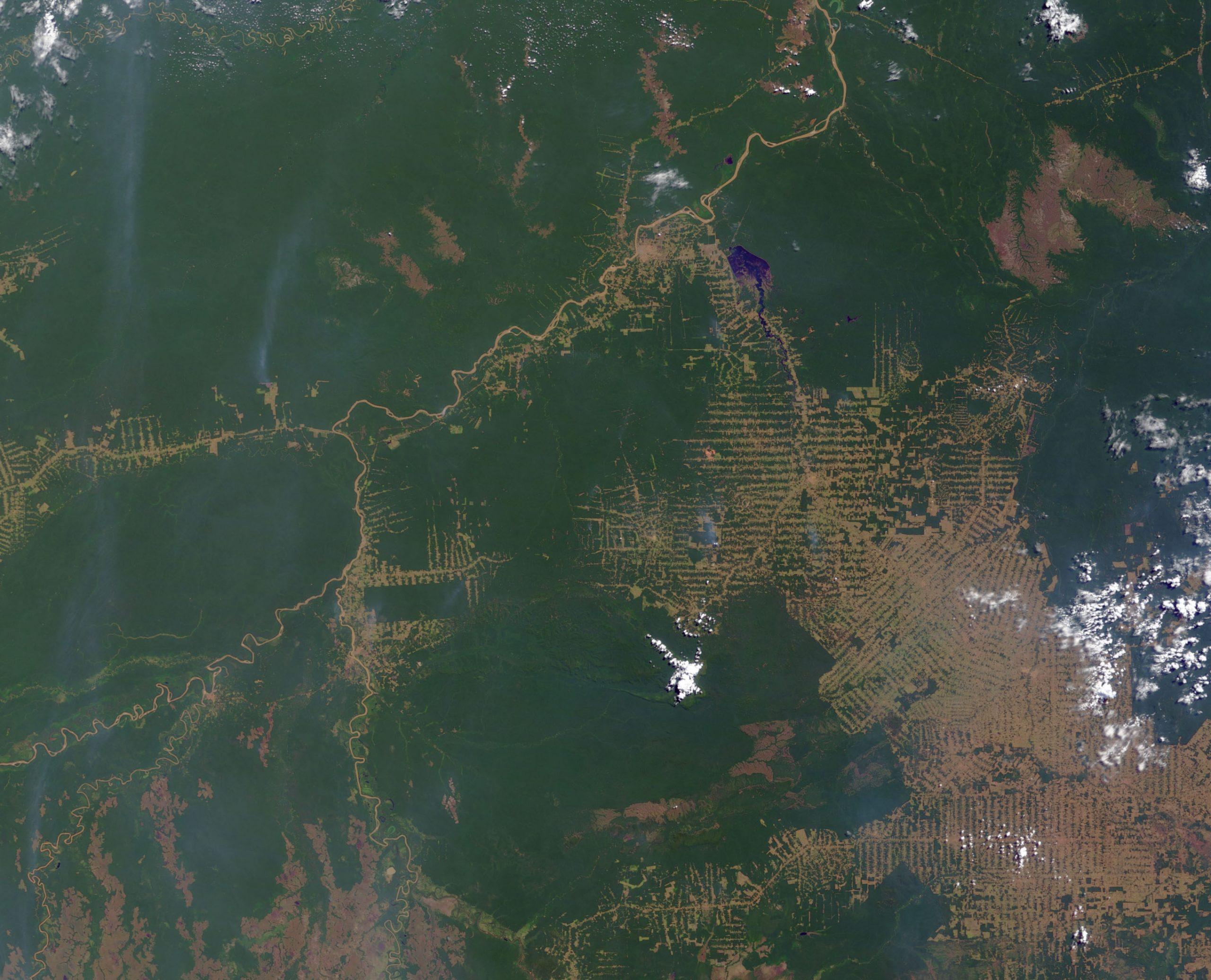 Regenwaldzerstörung in Rondonia 2000