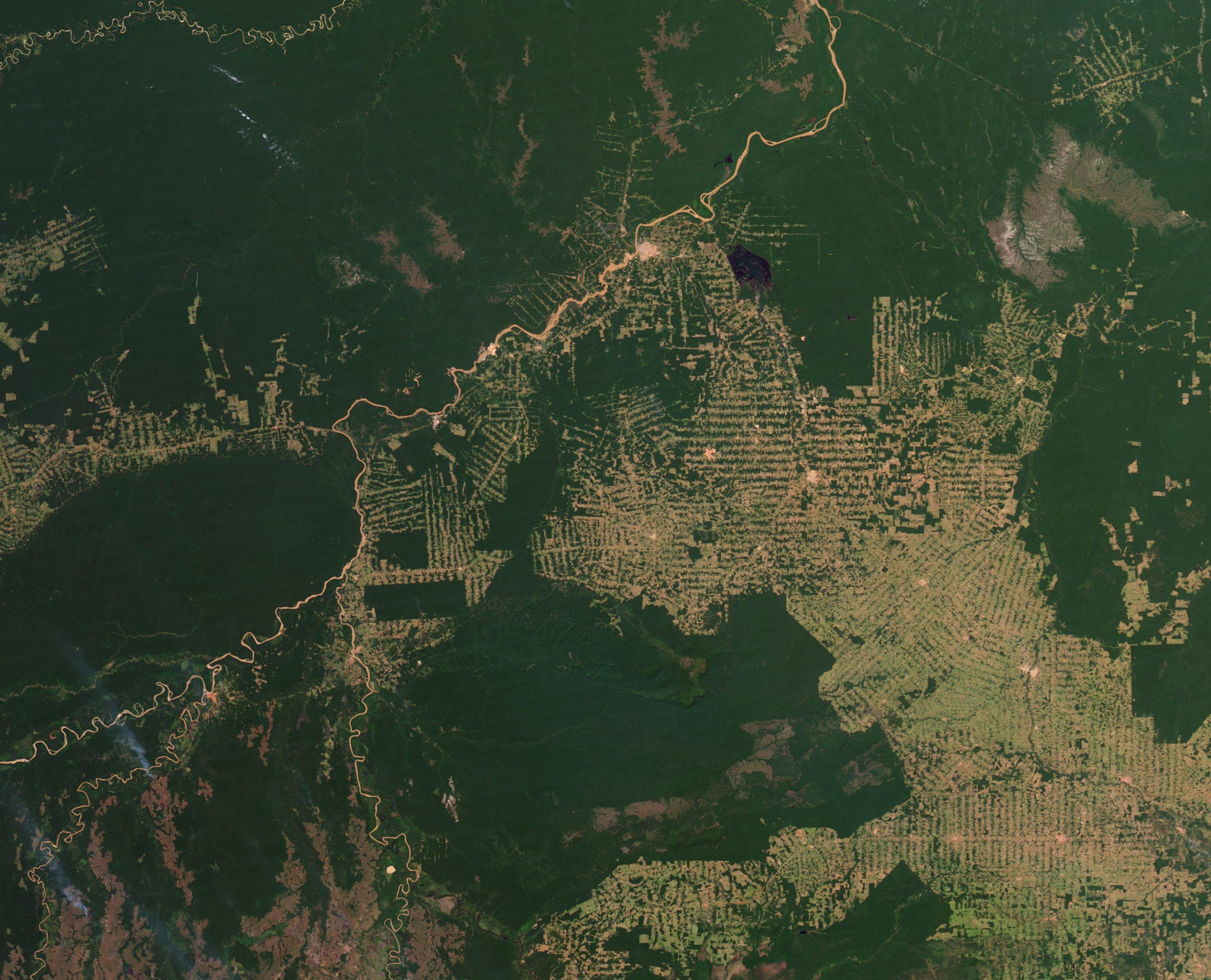 Regenwaldzerstörung in Rondonia 2012