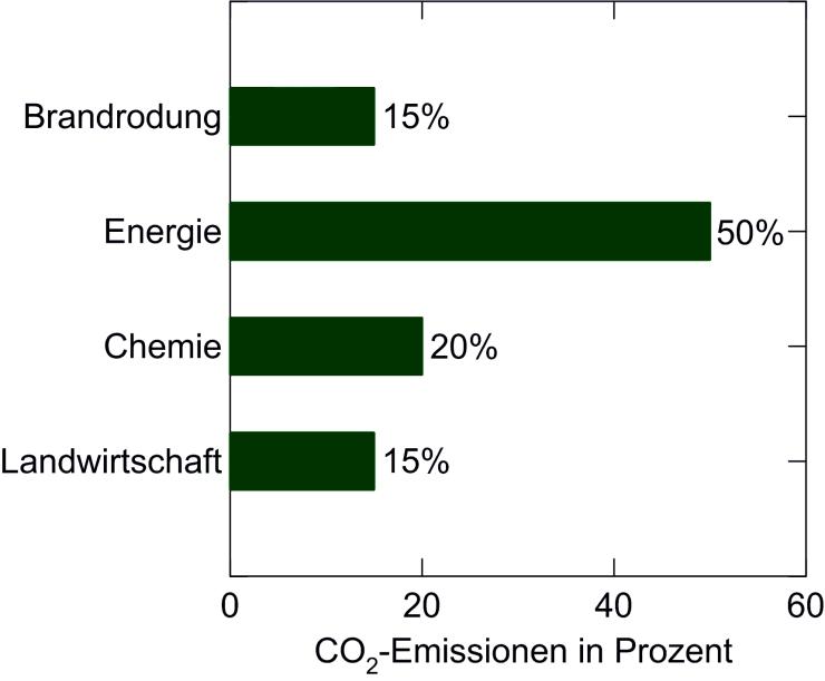 Grafik: Brandrodung tropischer Regenwälder an globalen Kohlenstoffdioxid-Emissionen