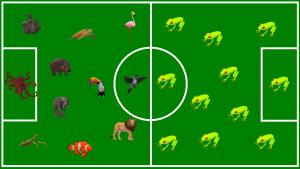 Fußballfeld: Artenvielfalt gewinnt immer!
