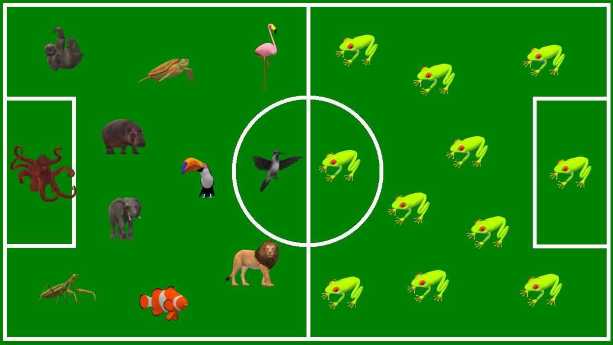 Fußballfeld Artenvielfalt